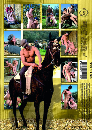 Stallburschen Cover Back