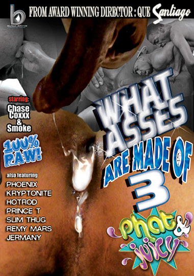 What Asses Are Made Of 3 Phat and Juicy Cover Front
