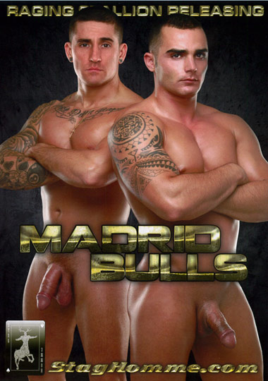 Madrid Bulls Cover Front