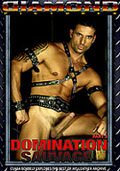 Domination Sauvage 2