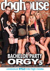 Bachelor Party Orgy 5