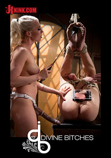 Divine Bitches: Lorelei Lee and David Chase cover