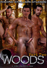 the woods 2, raging stallion, paddy o'brian, outdoors, gay, porn, marcus ruhl