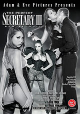 The Perfect Secretary 3: New Recruit