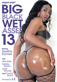 Big Black Wet Asses 13 cover