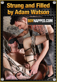 Boynapped 330: Strung And Filled By Adam Watson cover