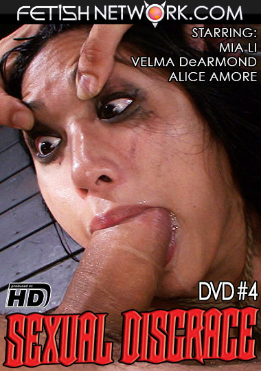 Sexual Disgrace 4 cover