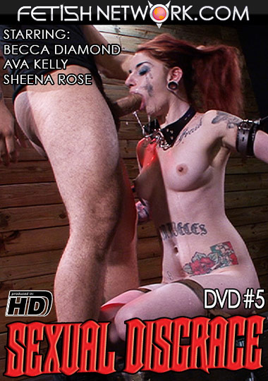 Sexual Disgrace 5 cover