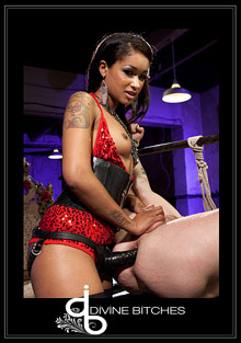 Divine Bitches: Her Highness Queen Of Diamonds: Skin Diamond cover