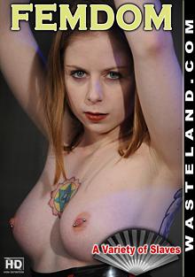 FemDom: A Variety Of Slaves cover