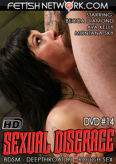 Sexual Disgrace 14 cover