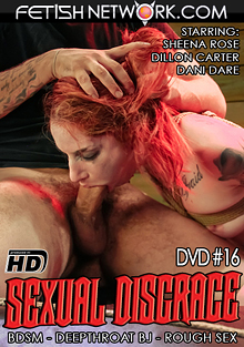 Sexual Disgrace 16 cover