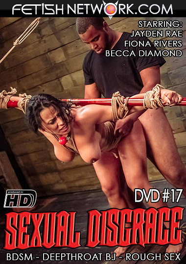 Sexual Disgrace 17 cover