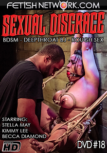 Sexual Disgrace 18 cover