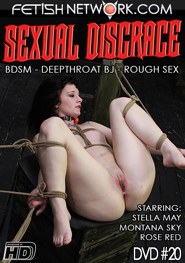 Sexual Disgrace 20 cover