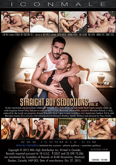 Straight Boy Seductions 2 Cover Back