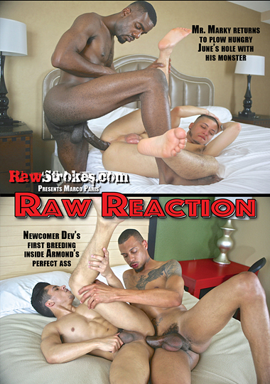 raw reaction, bareback, interracial, amateur, gay porn, raw strokes, draven torres, armond rizzo, trelino, dev, champ robinson, mr. marky, june quinones, knockout, kappa, big black cock, big dick, marco paris
