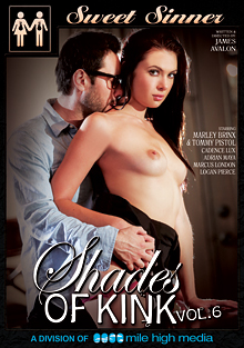 Shades Of Kink 6 cover