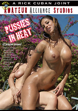 Taboo Sex Fantasies 14: Pussies In Heat