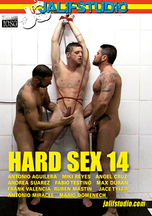 Hard Sex 14 cover