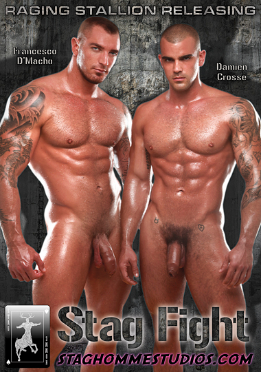 Stag Fight Cover Front