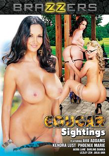 Cougar Sightings - cougar - Sightings, cougar