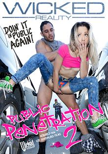 Public Penetration 2 cover