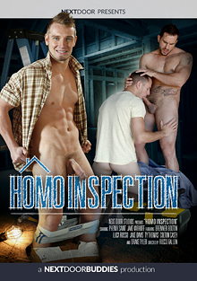 Homo Inspection cover