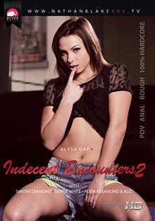 Indecent Encounters 2 cover