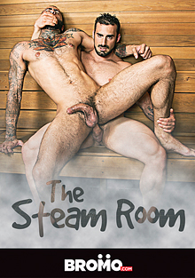 The Steam Room cover