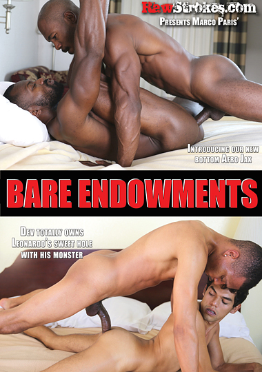 Bare Endowments cover