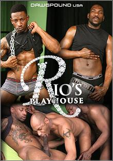 Rio's Playhouse cover