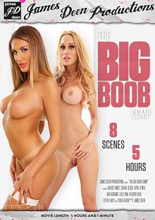 The Big Boob Comp cover