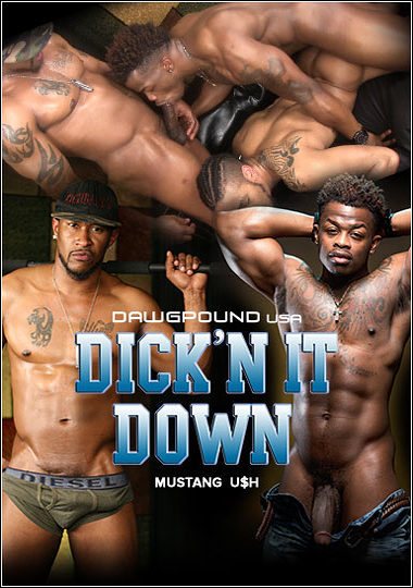 Dick'n It Down cover