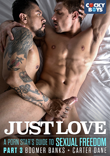 Just Love: Part 3 cover