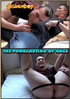 The Porn Casting Of Ange