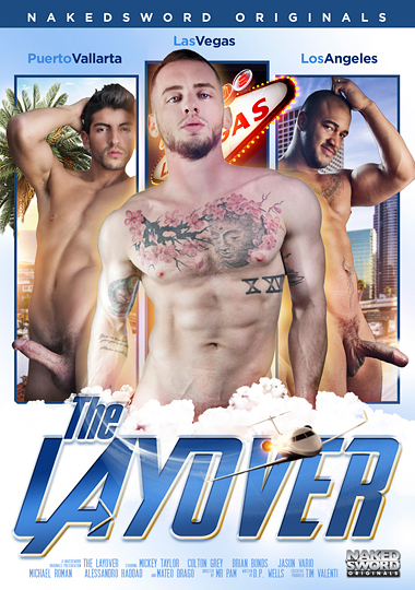The Layover cover