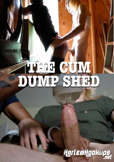 The Cum Dump Shed cover