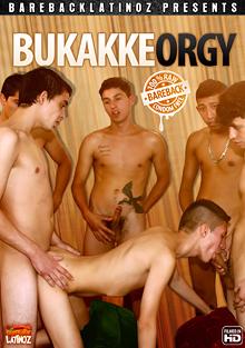 Bukakke Orgy cover