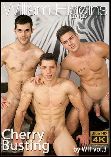 Cherry Busting 3 cover