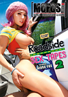 Roadside Sex Tapes 2