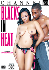 Blacks In Heat