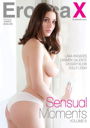 Sensual Moments 6 cover