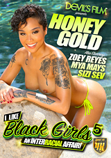 i like black girls 5, honey gold, devil's film, interracial, porn