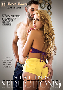Sibling Seductions 2 cover