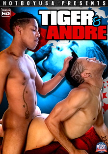 Tiger And Andre cover
