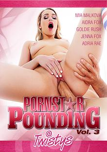 Pornstar Pounding 3 cover