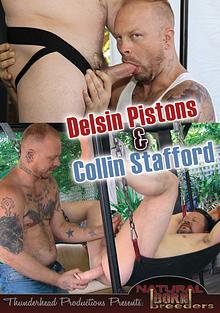 Delsin Pistons And Collin Stafford cover