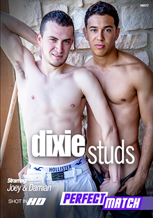 Dixie Studs cover