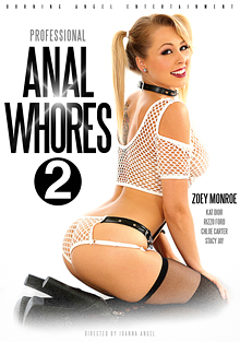 Professional Anal Whores 2 cover
